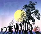 Sondheim's <i>Into the Woods</i> at Binghamton University
