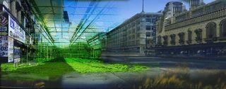 The Growth of Urban Farming