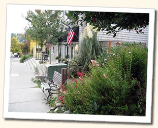 Featured Businesses: Bainbridge Island