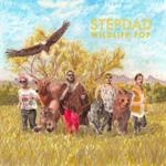 KUMD Album Reviews: Stepdad